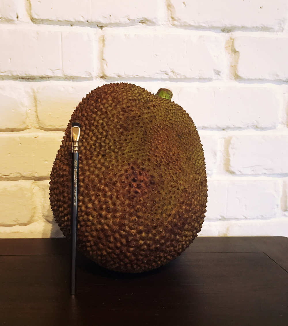 Our first Jackfruit delivery for new Vegan Menu